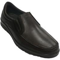 Zapatos Hombre Mocasín Pitillos Zapato hombre pala lisa marrón