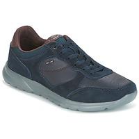 Zapatos Hombre Zapatillas bajas Geox U DAMIAN Azul