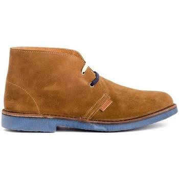 Zapatos Hombre Botas de caña baja Colour Feet MOGAMBO Marrón