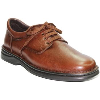 Zapatos Hombre Mocasín Tolino Zapato de cordones muy resistente marrón