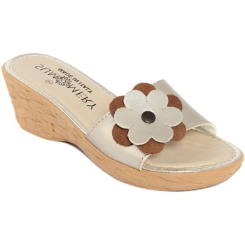 Zapatos Mujer Zuecos (Mules) Summery  Oro