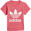 adidas Originals Camiseta Trefoil