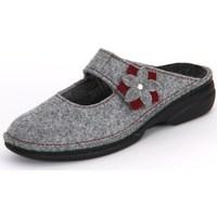 Zapatos Mujer Zuecos (Clogs) Finn Comfort Arlberg Light Greycassis Wollfilz Gris