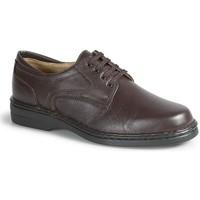 Zapatos Hombre Derbie Calzamedi CABALLERO M MARRON
