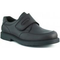 Zapatos Niño Zapatillas bajas Pablosky TORO COLEGIAL MARRON