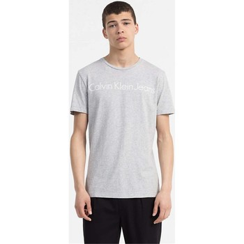 textil Hombre camisetas manga corta Calvin Klein Jeans J30J306458 TREASURE T-SHIRT Hombre LIGHT GREY LIGHT GREY