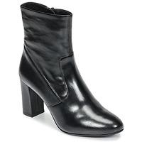 Zapatos Mujer Botines Steve Madden AVENUE Negro