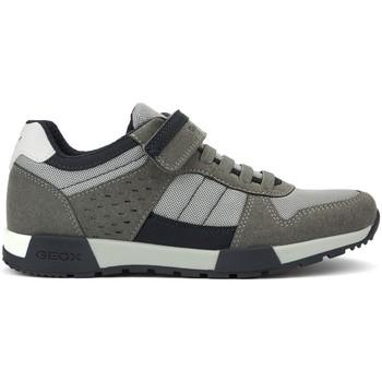 Zapatos Mujer Zapatillas bajas Geox ALFIER M GREY