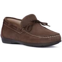 Zapatos Hombre Mocasín Igi&co SCAMOSCIATO TORTORA Beige