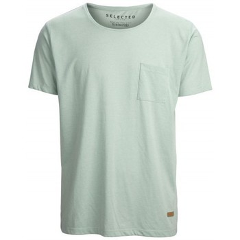 textil Hombre camisetas manga corta Selected Camiseta Dave Frosty verde