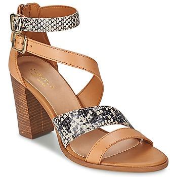 Zapatos Mujer Sandalias Carvela KISSY Marrón