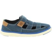 Zapatos Niños Sandalias Timberland A1P8D GATEWAY Azul