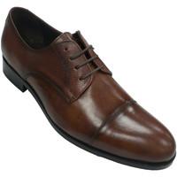 Zapatos Hombre Derbie Tolino Zapato clásico vestir hombre con cordone marrón