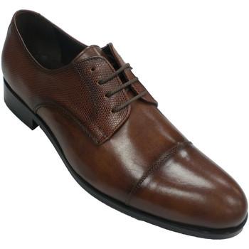 Zapatos Hombre Derbie Tolino Zapato clásico vestir hombre con cordones marrón