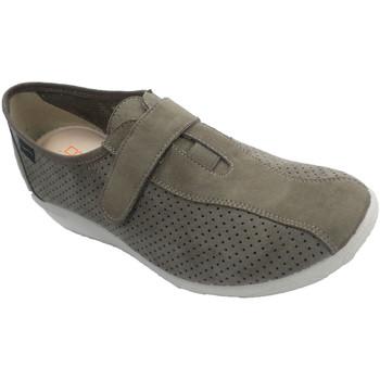 Zapatos Mujer Slip on Doctor Cutillas Zapatillas mujer que simulan zapato de ante beige