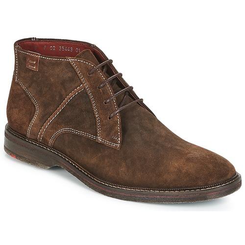 Zapatos especiales para hombres y mujeres Lloyd DALBERT Marrón