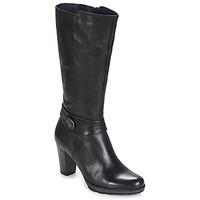 Zapatos Mujer Botas urbanas Dorking REINA Negro