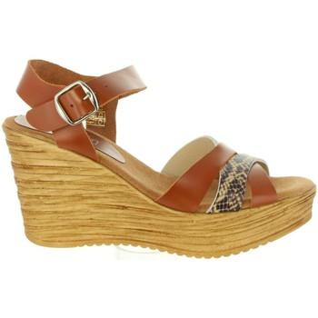 Zapatos Mujer Sandalias Cumbia 31001 Marrón
