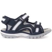 Zapatos Niños Sandalias Geox J Borealis Boy Navygrey Negro