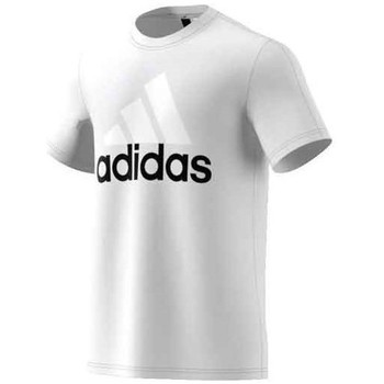 textil Hombre camisetas manga corta adidas Originals Performance Essentials Linear Tee Blanco