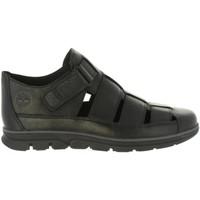 Zapatos Hombre Sandalias Timberland A1PEC BRADSTREET Negro