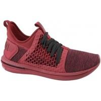 Zapatos Hombre Multideporte Puma Ignite Limitless SR Netfit 190962-02 rojo