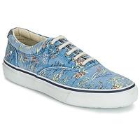 Zapatos Hombre Zapatillas bajas Sperry Top-Sider STRIPER HAWAIIAN Azul