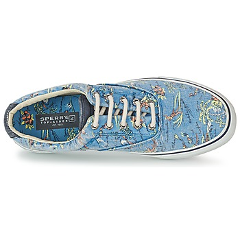 Sperry Top-Sider STRIPER HAWAIIAN Azul