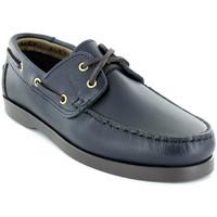 Zapatos Hombre Zapatos náuticos Alex M Shoes Vellas Azul