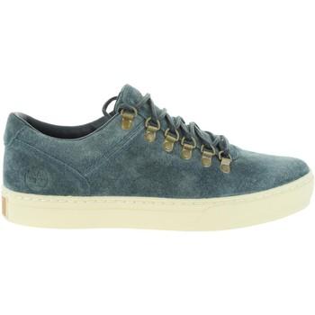 Zapatos Hombre Zapatillas bajas Timberland A1LI4 ADVENTURE Azul