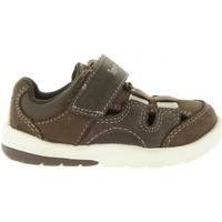 Zapatos Niños Sandalias Timberland A1P43 TODDLE Marrón