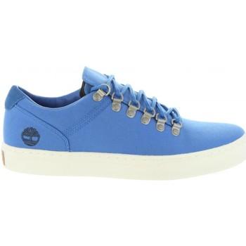 Zapatos Hombre Zapatillas bajas Timberland A1Q1K ADVENTURE Azul