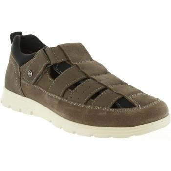 Zapatos Hombre Sandalias Panama Jack DONOVAN C4 Gris