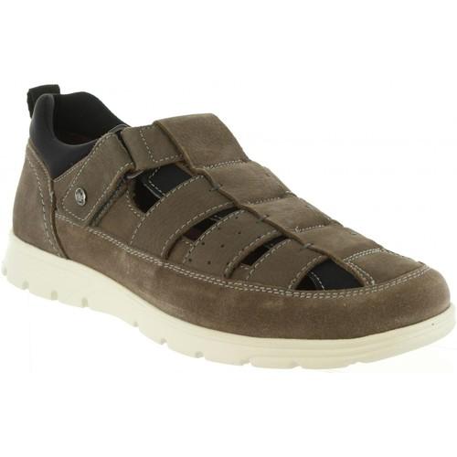 Zapatos especiales para hombres y mujeres Panama Jack DONOVAN C4 Gris