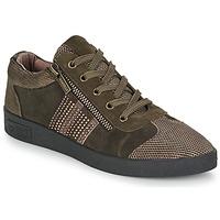 Zapatos Mujer Zapatillas bajas Mam'Zelle BADRIA Marrón