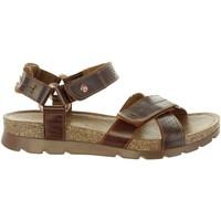 Zapatos Hombre Sandalias Panama Jack SAMBO EXPLORER C4 Marrón