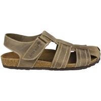 Zapatos Mujer Sandalias Interbios S PARDO