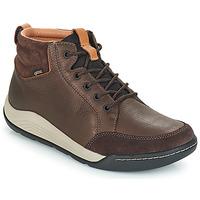 Zapatos Hombre Zapatillas altas Clarks ASHCOMBE Marrón