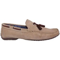 Zapatos Hombre Mocasín Enzo Tesoti 701804 Taupe taupe taupe