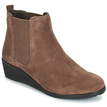 Zapatos Mujer Botas de caña baja Hush puppies COLETTE Marrón