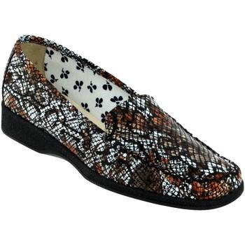 Zapatos Mujer Mocasín Marco ANAEL Cuero marrón/blanco