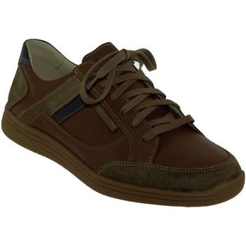 Zapatos Hombre Zapatillas bajas Mephisto Frank Cuero marrón medio