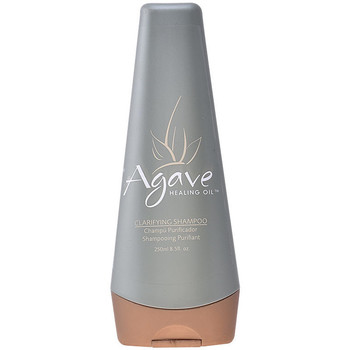 Belleza Champú Agave Healing Oil Clarify Shampoo  250 ml