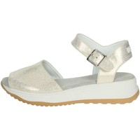 Zapatos Mujer Sandalias Agile By Ruco Line Agile By Rucoline  146(37-A) Sandalias Mujer Platino Platino