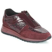 Zapatos Mujer Zapatillas bajas Geox D TABELYA Burdeo