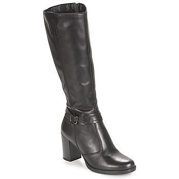 Zapatos Mujer Botas urbanas André PHARA Negro