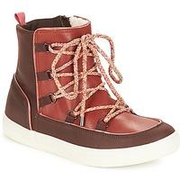 Zapatos Mujer Botas de caña baja André SNOW Marrón