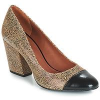 Zapatos Mujer Zapatos de tacón André FAUVE Beige