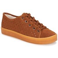 Zapatos Mujer Zapatillas bajas André STARLIGHT Marrón