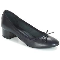 Zapatos Mujer Bailarinas-manoletinas André POETESSE Marino